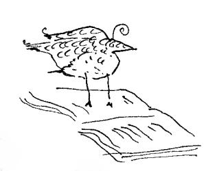 KK-buttons book bird