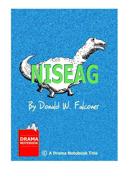 Play Script for Teens-Niseag