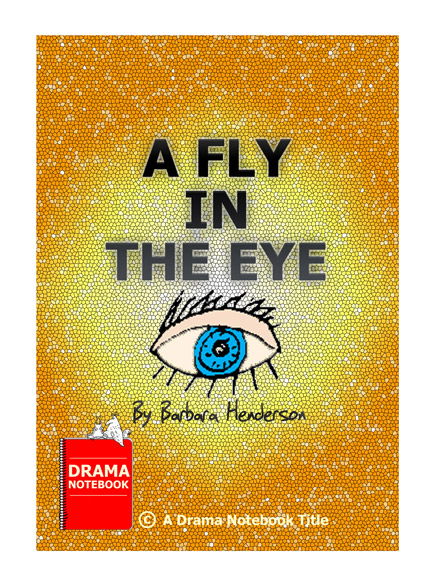 Short funny play for kids-A Fly In The Eye